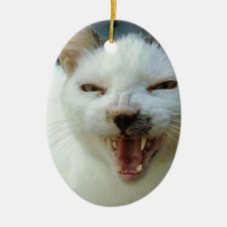 Last Hopes Chatty Catty Ornaments
