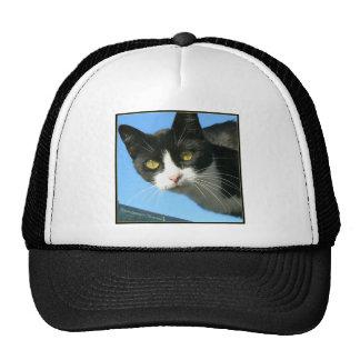 Last Hopes Curious Bandit Trucker Hat