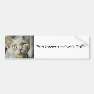 Last Hope's Jean Grey Car Bumper Sticker