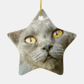 Last Hope's Jean Grey Ceramic Ornament