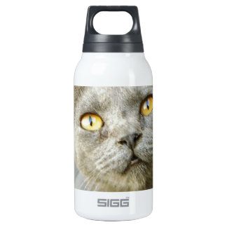 Last Hope's Jean Grey SIGG Thermo 0.3L Insulated Bottle