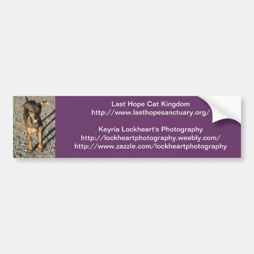 Last Hope's Ruthie Bumper Sticker