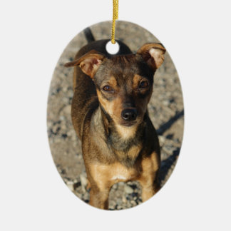 Last Hope's Ruthie Ceramic Ornament