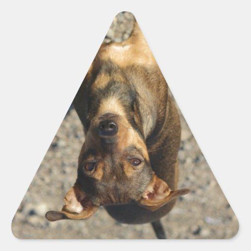 Last Hope's Ruthie Triangle Sticker