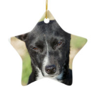 Last Hope's Squeakers Christmas Ornament