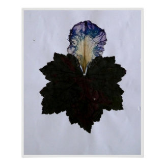 Last Leaf Poster