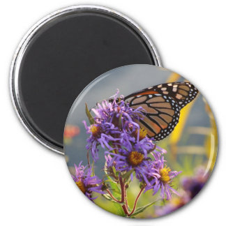 Last Monarch Butterfly 2 Inch Round Magnet