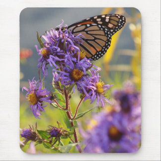 Last Monarch Butterfly Mouse Pad