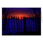 LAST OF THE WINTER SUN GREETING CARD