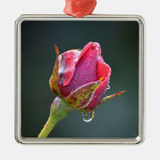 last red rose in the autumn with water drops metal ornament