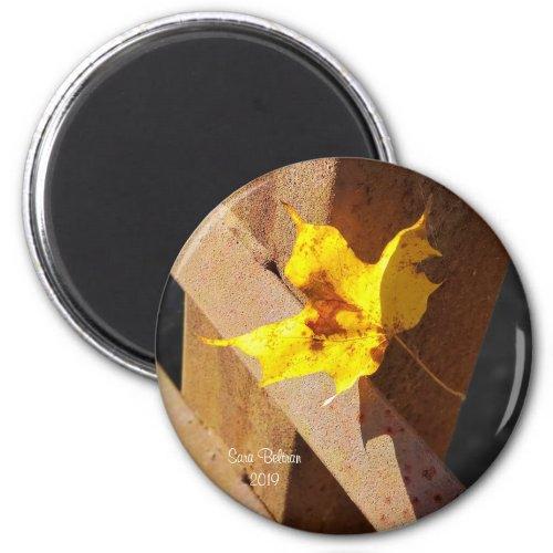 Last Yellow Leaf Magnet