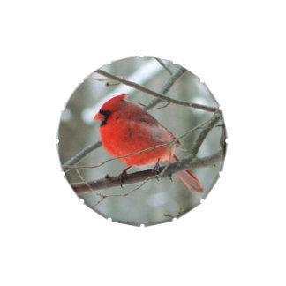 Lata cardinal roja del caramelo del pájaro frascos de caramelos