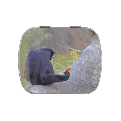 Lata del caramelo del Gibbon Frascos De Dulces