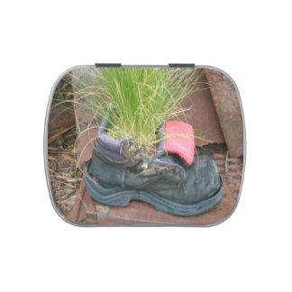 Lata del caramelo del zapato de la hierba verde jarrones de caramelos