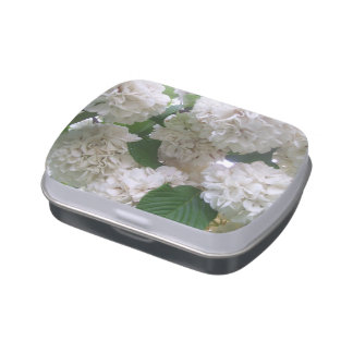 Lata del caramelo - Hydrangea blanco Jarrones De Caramelos