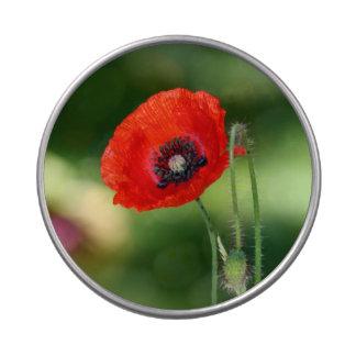 Lata roja de la jalea de la flor de la semilla de  latas de caramelos