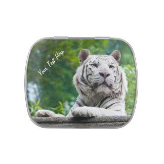 Latas de encargo y tarros del tigre blanco latas de caramelos