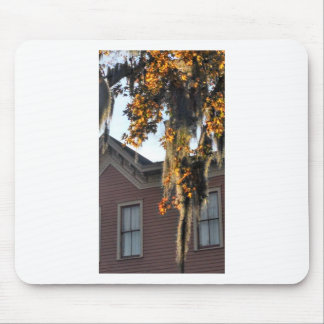 late afternoon light on leaves in Savannah, GA, US Mouse Pad