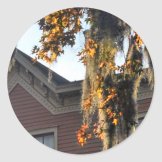 late afternoon light on leaves in Savannah, GA, US Classic Round Sticker