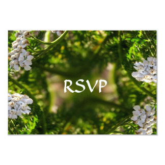 Late Day Glory Fractal RSVP Cards
