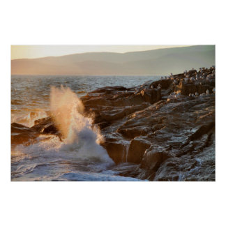 'Late Evening Sun and Surf at Schoodic Point 2' Poster