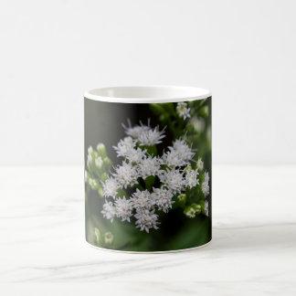 Late-flowering Boneset White Wildflower Mug Cup
