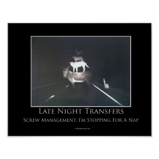 Late Night Transfers Motivational Poster