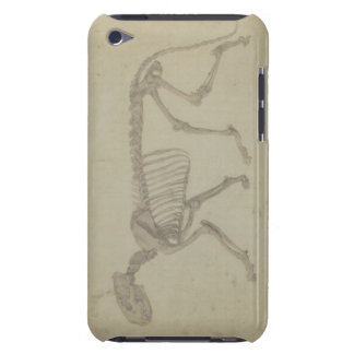 Lateral View of a Tiger Skeleton, finished study f Barely There iPod Cover