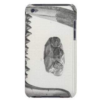 Latidens de XLIX Coryphodon Funda Case-Mate Para iPod