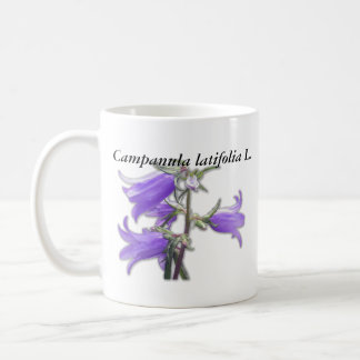 Latifolia L. Mug del Campanula Tazas De Café