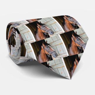 Latigo Trail Neck Tie