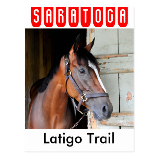 Latigo Trail Postcard