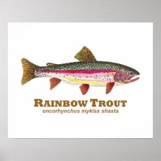 Latín de la trucha arco iris poster