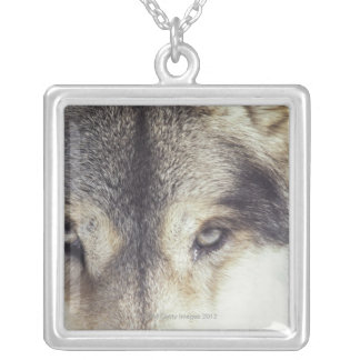 Latin name: Canis Lupus Silver Plated Necklace