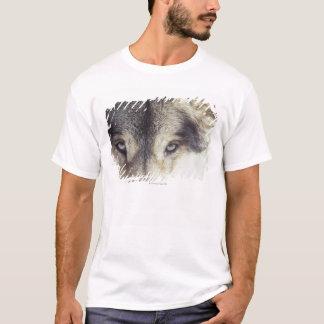 Latin name: Canis Lupus T-Shirt