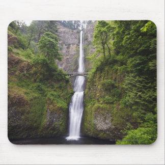 Latourell Falls & Bridge Columbia River Gorge Mouse Pad