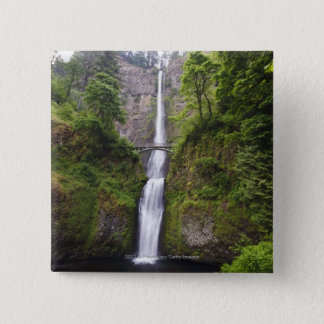 Latourell Falls & Bridge Columbia River Gorge Pinback Button