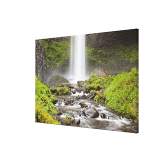 Latourell Falls, Columbia River Gorge, Oregon, Stretched Canvas Print