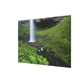 Latourell Falls, Columbia River Gorge, Oregon, Canvas Print