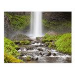Latourell Falls, Columbia River Gorge, Oregon, Post Card