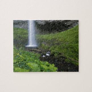 Latourell Falls, Columbia River Gorge, Oregon, Puzzles
