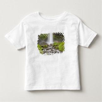 Latourell Falls, Columbia River Gorge, Oregon, Toddler T-shirt