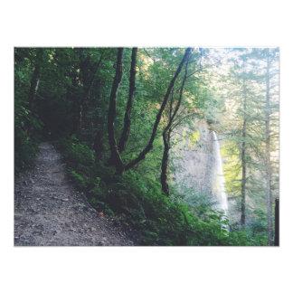 Latourell Falls Hike Photo