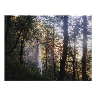 Latourell Falls Photograph