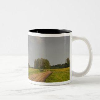 Latvia, Northeastern Latvia, Vidzeme Region, 4 Two-Tone Coffee Mug