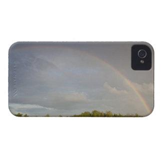 Latvia, Northeastern Latvia, Vidzeme Region, 5 Case-Mate iPhone 4 Case