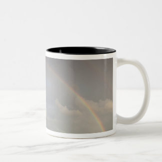 Latvia, Northeastern Latvia, Vidzeme Region, 5 Two-Tone Coffee Mug