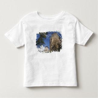 Latvia, Northeastern Latvia, Vidzeme Region, Toddler T-shirt