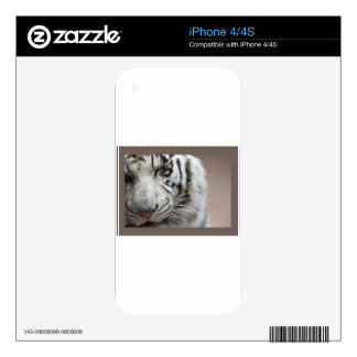 Laugh Of The White Tiger Skins For iPhone 4