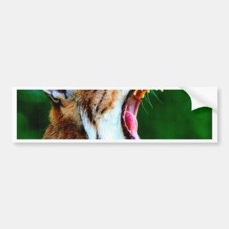 Laugh out loud bobcat lynx wildcat bumper sticker